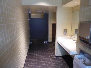 japan toilet 3