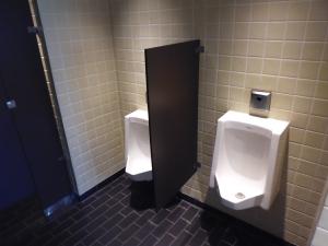 japan toilet 4